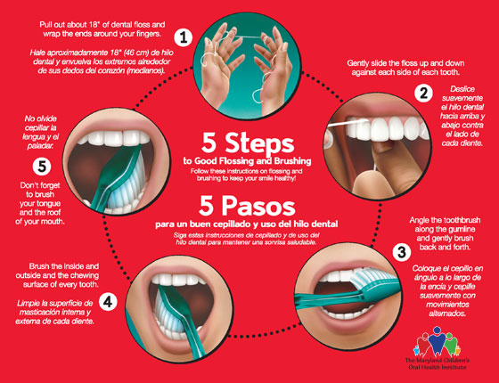 Follow these steps to good flossing and brushing.